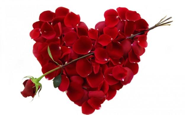 ValentineS-Day-Rose-Cupid-Arrow-1050x1680