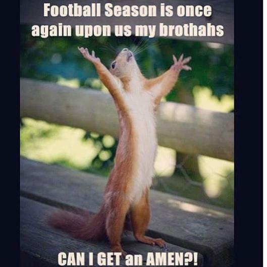 Football squirrel